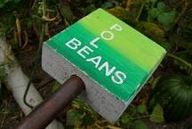 School Garden Signs / Examples of signage from school garden sites.