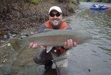 TRINITY RIVER CALIFORNIA / Fly fishing the Trinity River in California.