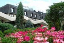 Ogród/ Hotel Garden