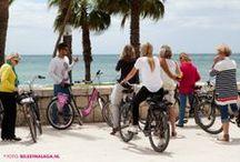 Guided bike tours Malaga