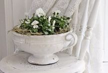 Shabby Chic & White Romantic