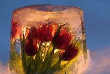 Ice lanterns
