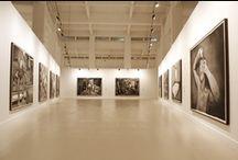 Rinus Van de Velde / Exposición del artista Rinus Van de Velde (1 de febrero - 31 de marzo de 2013)
