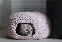 DIY: Creations to make the cats happy