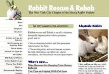 Our HRS Family / Our House Rabbit Society CHAPTERS