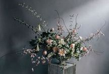 Sally Eagle | Flowers, flowers, flowers!