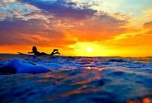 the surf life