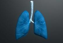 El artículo del día! Bronquitis: Información, diagnóstico y tratamiento