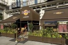 Fit Out - Hard Rock / Fit Out Division by Edgewater Contracts - Hard Rock Cafe Projects