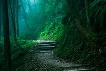 nature&places