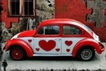 bug love / by Rochelle Belknap
