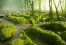 Fantastic Reality (for Inspiration) / Earthly places that look otherworldly.