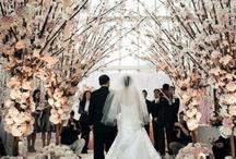Dream Wedding / by Kaitlyn Oates
