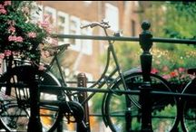 Cycling / Grab your bike and start exploring with Hampshire Hotels! / by Hampshire Hotels