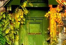 Come In. / by Rebecca Gerondale
