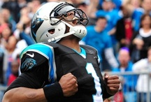 All things Panthers / by Kelly Robinson