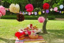 60th Birthday Picnic
