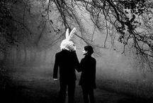 Conejos blancos / «¡Ay Dios! ¡Ay Dios! ¡Voy a llegar tarde!»