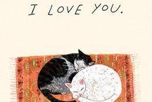 Cats / Mi adoración por los gatos, mininos, felinos y más