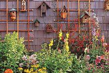 garden & alfresco
