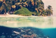 Bali Dreamin' / by Natalie Reichenbacher