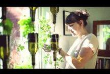 Windowfarm - Aquaponie - Potager Urbain