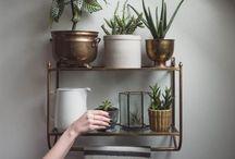 Good idea for home