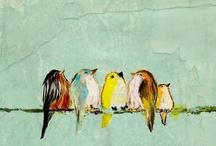 birds / always nice en sweet, birds