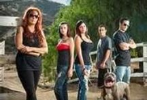 Pitbull and parolees  / Best show ever I want to work there / by Hannah Raunio