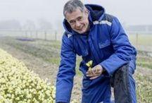 """Wir von Fluwel / """"Ich bin Carlos van der Veek, Gründer von Fluwel und passionierter Blumenzwiebelspezialist. Diese Leidenschaft wurde mir in die Wiege gelegt - mein Vater war einer der bekanntesten Narzissenexperten der Niederlande und hat mir eine riesige Narzissensammlung vererbt. In meinem Onlineshop www.fluwel.de könnt Ihr Blumenzwiebeln von mir und meinen Gärtner-Freunden bestellen. Sie kommen dann direkt von meinem Hof in Nord-Holland zu Euch nachhause. Wir von Fluwel lieben Blumenzwiebeln!"""""""
