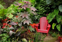 Gardens / by Gloria Cain
