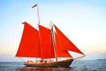 SET SAIL<<<<<<<<<<<< / Vessels on the water