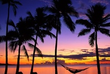 Tropical Paradise / Love Tropical Palms,The White Sands,The Exotic Flowers, The Blue Seas& The Vibrant Sunsets!!!