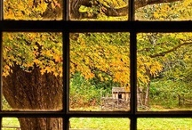 Every Window,What do you See / Can only dream of looking out my window to this view..