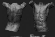 Anatomy references / Poses, anatomy, sculpt