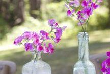 Blooms n Bottles. / by Gloria Cain
