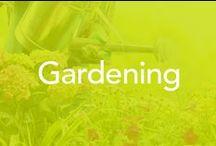 Gardening / Plants, watering, flowers, fruits, vegetables, herbs, tools