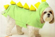 Cats and Dogs Sewing Patterns / Our collection of sewing patterns for your pets.