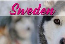 Sweden / Your guide to Sweden. Discover the North European country with it´s amazing landscape.