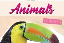 Animals Central America / Pictures & Stories about Animals in Central America