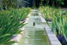 Ponds, Pools, Water