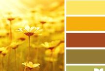 paint my world pretty - color combinations / by Gabrielle Amato