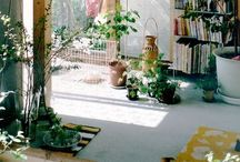 Home / by Karen Kluckow