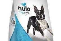 Nulo Dog