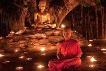 MEDITATION/YOGA/SPIRITUALITY / Harmony