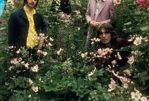 the Beatles / Uczyłam się dzięki nim angielskiego, poznawał am historie muzyki, mody...