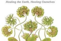 Bioneers Conference / Kami is teaching the healing power of herbs at The Bioneers Conference, 2014. Empower yourself with the knowledge of using medicinal plants to heal your self and prevent illness