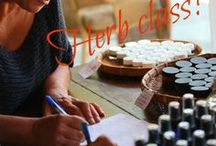 Herb Class! / Reviving the art of home herbal care. Empowered with the skill of using plant medicine to heal your body. For 25 years Kami McBride has helped thousands of people develop the confidence to  make and use herbal medicine for their every day health and wellness