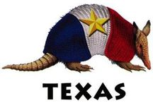 Deep in the Heart of Texas / Native Texan / by Christine Besand