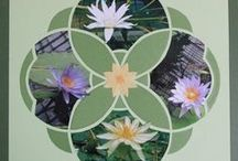 Water Lily - Seasonal Stencil- European Scrapbooking / All the beautiful creations from Lea France Fans!